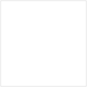 Make You Own Niche Website